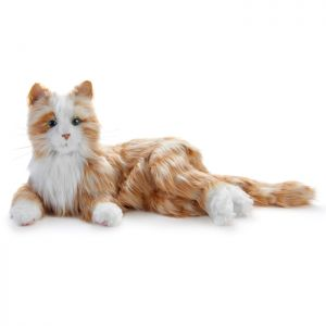 Ageless Innovations Companion Pet_orange tabby cat