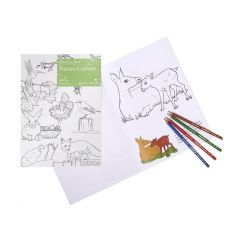AA006-Active Minds - Colouring Book - Nature Colours