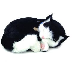 Perfect Petzzz Cat Black & White
